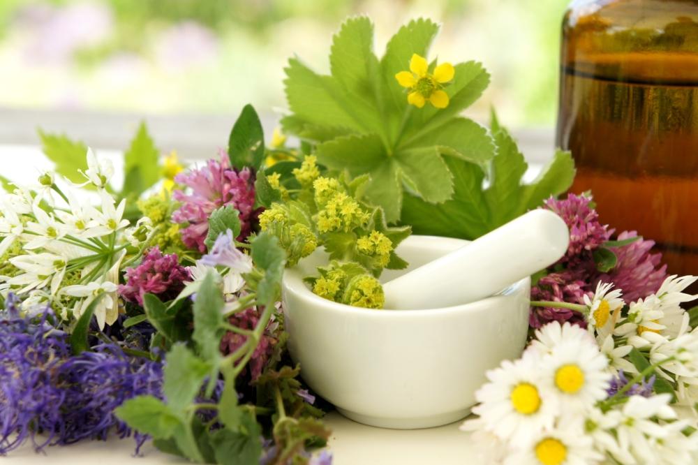 Heilpflanzen, natürliche Hormone, Tinktur herstellen